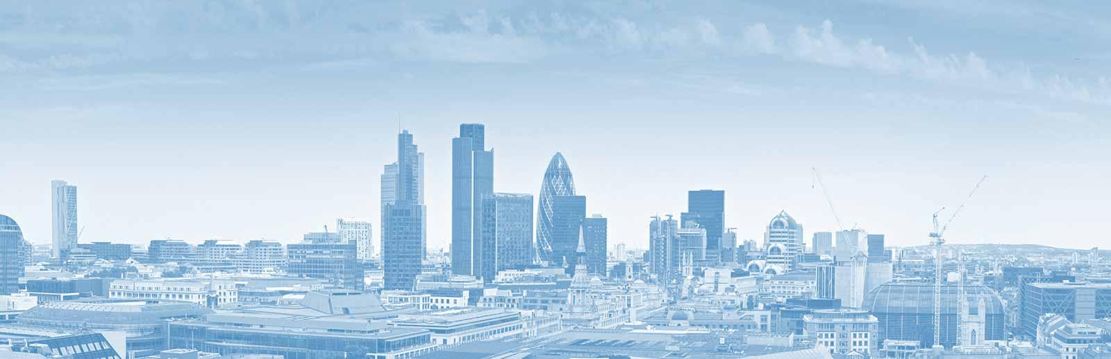 Multi-Vendor IT Support Services - Blue Sky Group Ltd